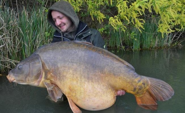 simongehrlein-28kg
