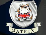 Matrix Innovation
