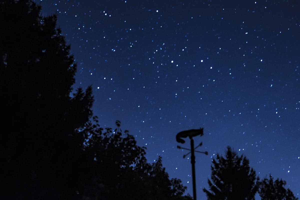Manchmal leuchtete es richtig! Sternenhimmel genauso wie Bissanzeiger...
